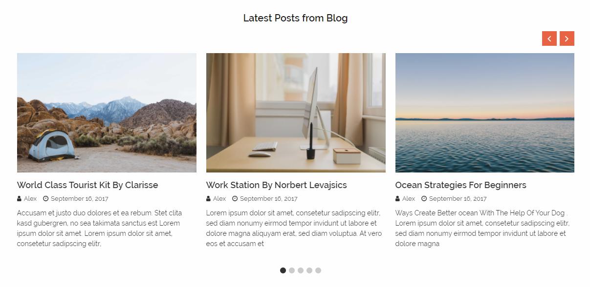 14+ Best Responsive WordPress Carousel Plugins 2019 - ShapedPlugin